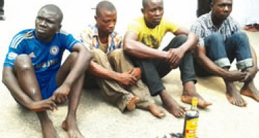 3 HUMAN PART DEALERS ARRAIGNED