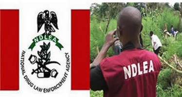 TEENAGERS SHOT BY NDLEA OFFICERS DEMAND N115M COMPENSATION