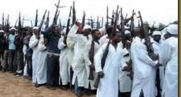 Boko Haram sponsors: Beyond Stephen Davis' revelation by Theophilus Ilevbare