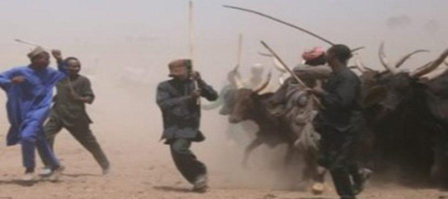 Ghana facing herdsmen-farmers' conflict – Ambassador