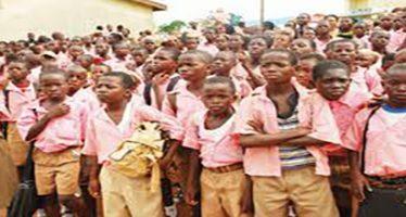 FG to feed 5.5m school children
