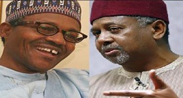 """Buhari, Dasuki's families are linked by marriage"" – President's biographer"