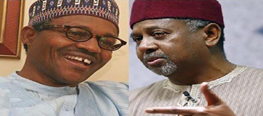 """Buhari, Dasuki's families are linked by marriage"" – President's biographer"