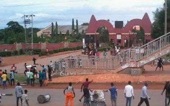 13 Auchi Poly lecturers sacked for sex-for-mark offences