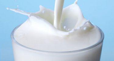 80 percent of milk consumed in Nigeria is imported – Dangote
