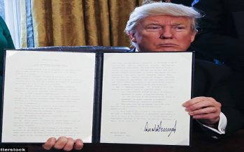 US judge suspends Trump travel ban