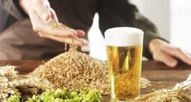 Obasnjo, Amosun commend Nigerian Breweries for sourcing its raw materials locally