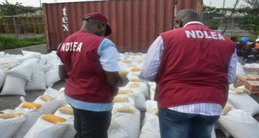 Suspect's death in NDLEA custody : Court awards N30m damages against agency
