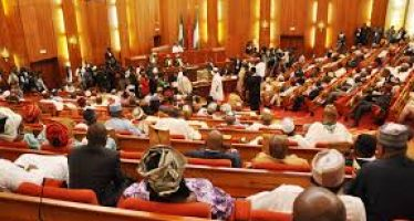 We rejected 82-year-old ambassadorial nominee because of national anthem, others – Senate