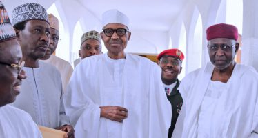 Fani-Kayode calls Buhari 'a walking corpse'