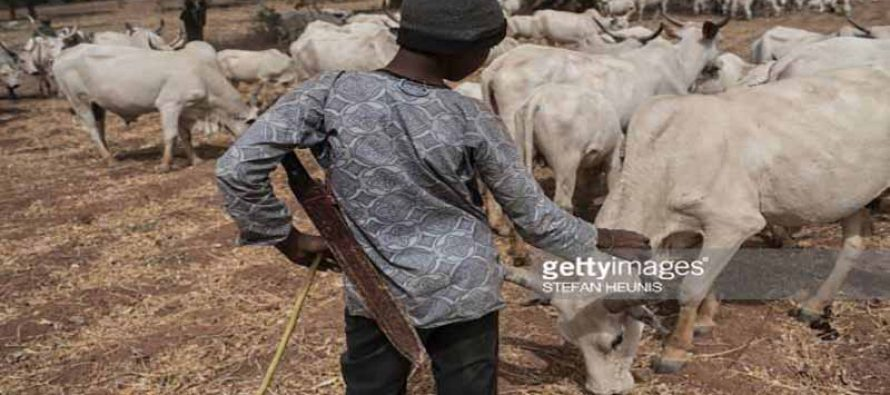 15 year-old Fulani herdsman sentenced to death for killing farmers' son
