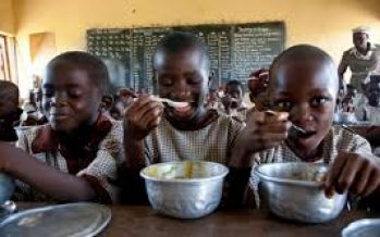 The right kind of investment for nutrition By Jide Ayobolu