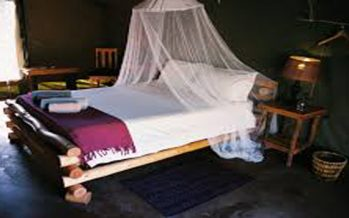 Sokoto proposes law to make it compulsory for suitors to add mosquito net to bride price