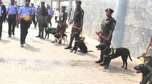 OrijoReporter.com police dogs