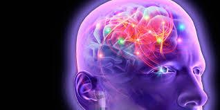 OrijoReporter.com, causes of epilepsy